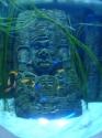 Sculpted aztec theme