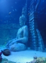 Submerged temple