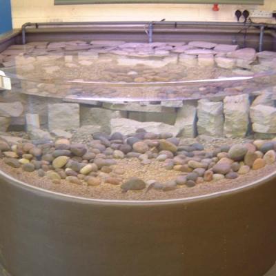 Stand alone foyer aquarium display