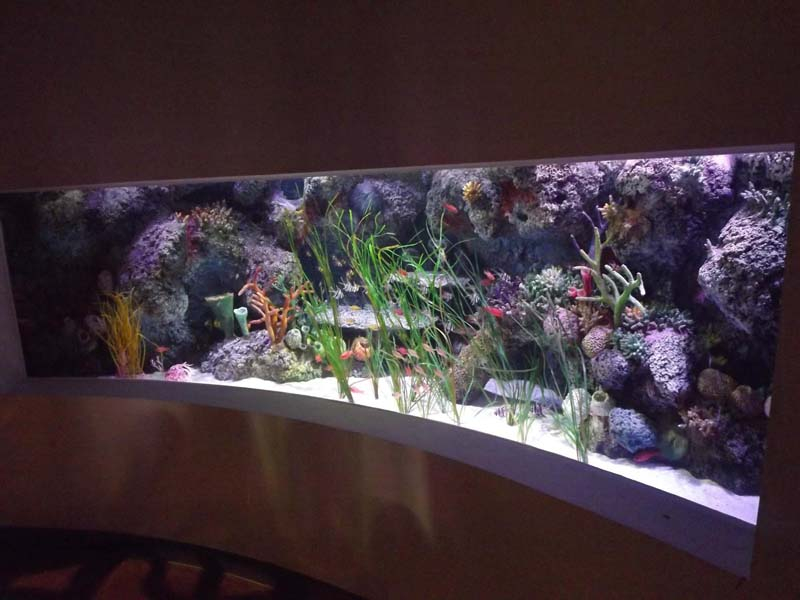 Tank decor replicating habitats original rock coral - Aquarium mural deco ...