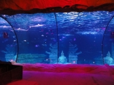 Ocean candy cane view , curved panels