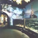 Reservoir display