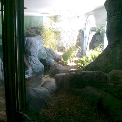 Glazed otter display