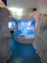 Ice habitat marine display