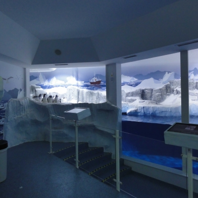 Penguin pool combination surface and immersed glazing