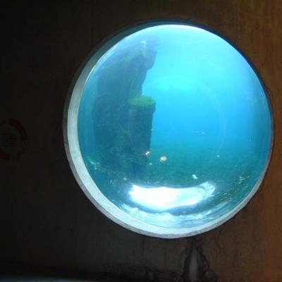 Seal display hemisphere view