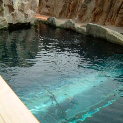 Seal display tunnel