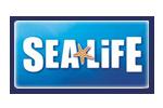 visit Sealife and see aquariums custom built by ATL