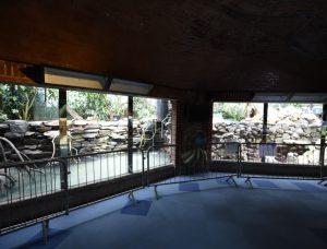 Large Aquatic Displays panel refurbishment