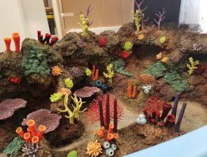 ATL artificial coral range