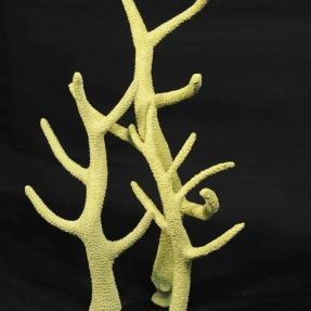Staghorn coral - artificial corals