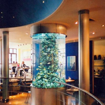 Restaurant aquarium display