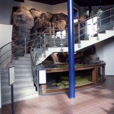 Spectacular foyer aquarium display with waterfall