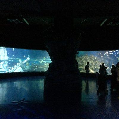 Acrylic panorama view