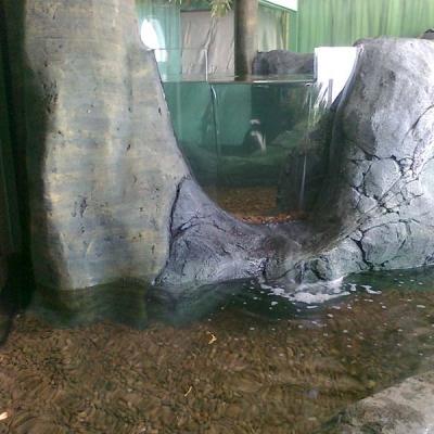 Otter display pools