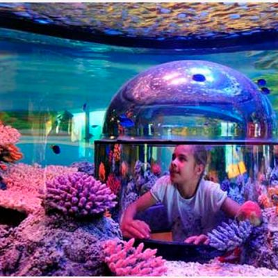 Marine display with an immersive experience