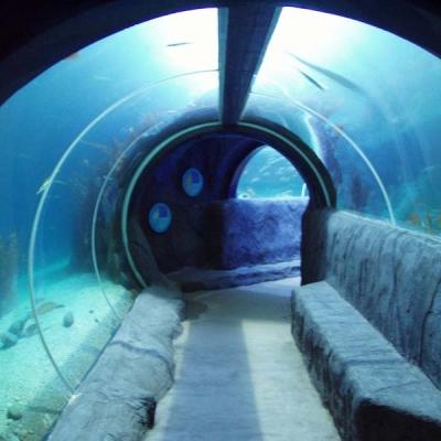 Hybrid ocean tunnel