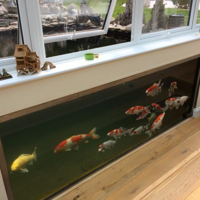 Viewing Panels Large Aquariums Swimming Pool Pond Glazing Windows