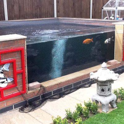 Custom built glazed Koy carp pond