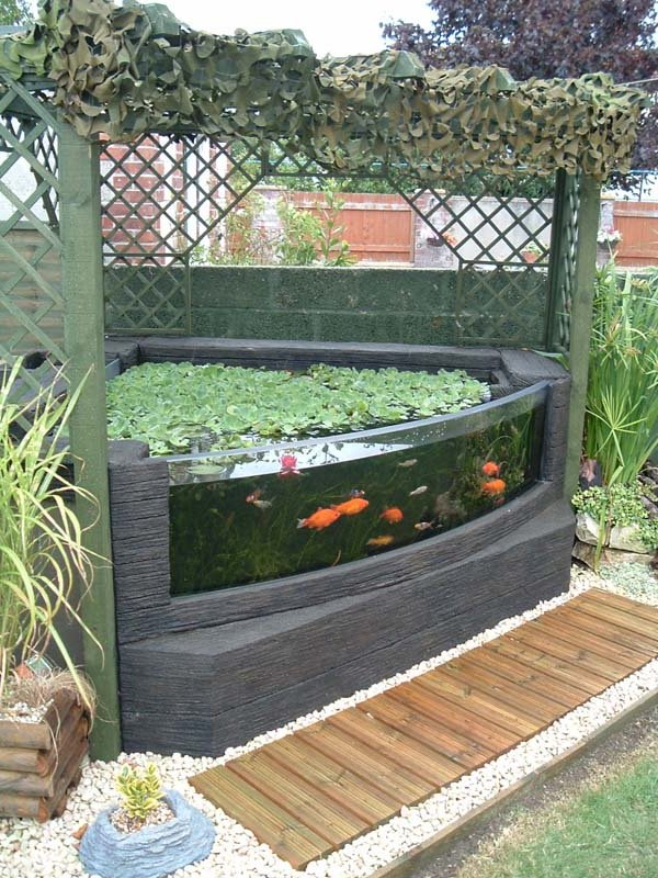 Garden pond viewing window leaders in aquarium technology for Aquarium fish for pond