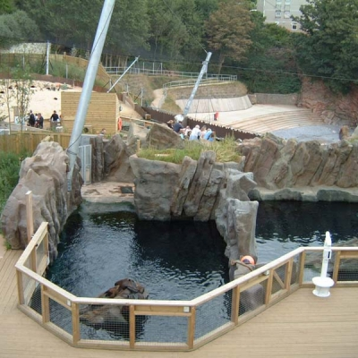 Landscaped seal display with waves