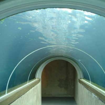 Seal pool tunnel