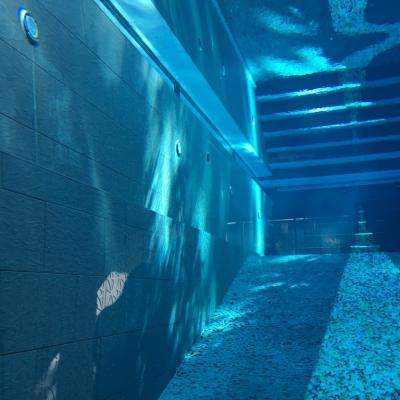 Thru pool view