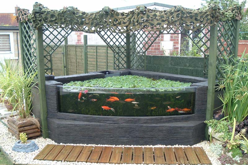 Garden pond viewing window leaders in aquarium technology for How to build an outdoor aquarium