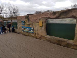 Chester Zoos penguin island ATL