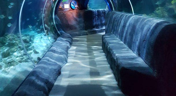 ATL acrylic tunnels