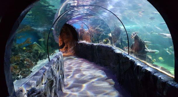 ATL Tunnel