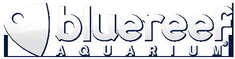 ATL Client bluereef Aquarium